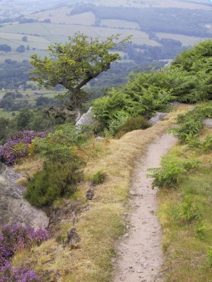 path Cliff